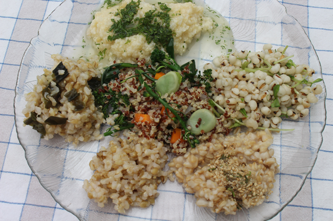Five Whole Grains Plate