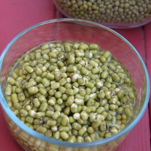 650-soaking-mung-beans-img_0024-copy