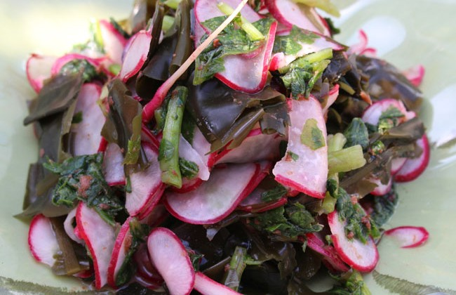 Wakame red radish ume pressed salad CR 650