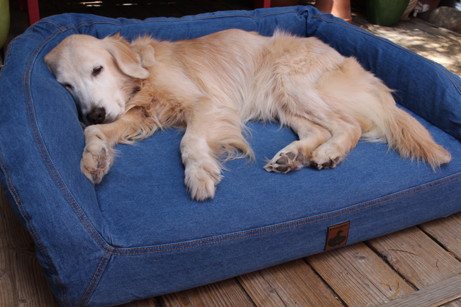 Kula with her 13th birthday gift of new bed