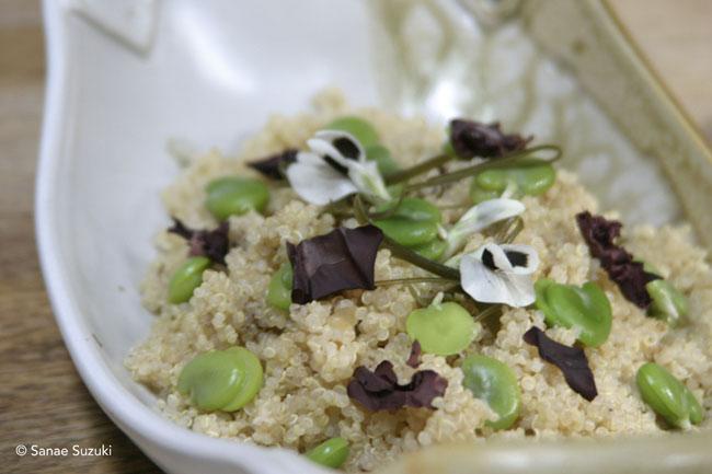 Quinoa Salad ©