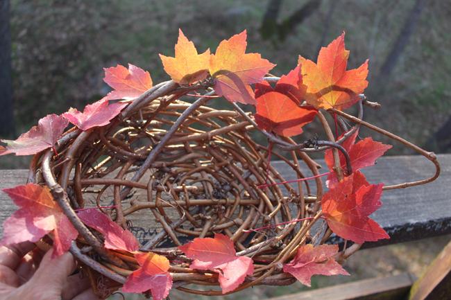 650 Thanksgiving Basket