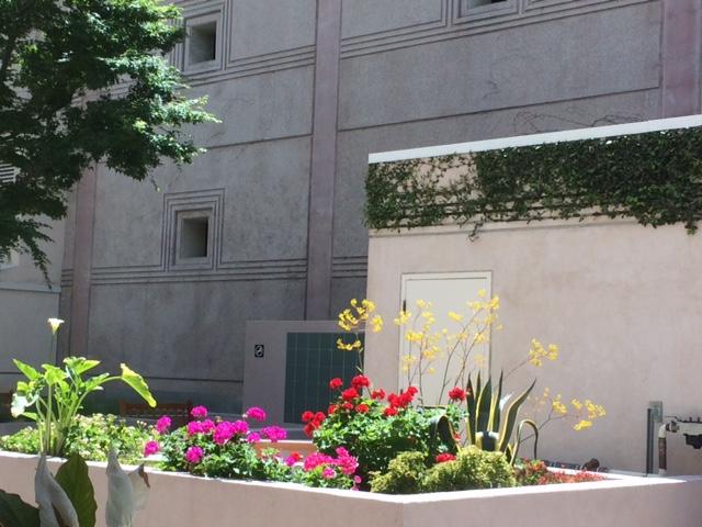 Neulasta shot garden
