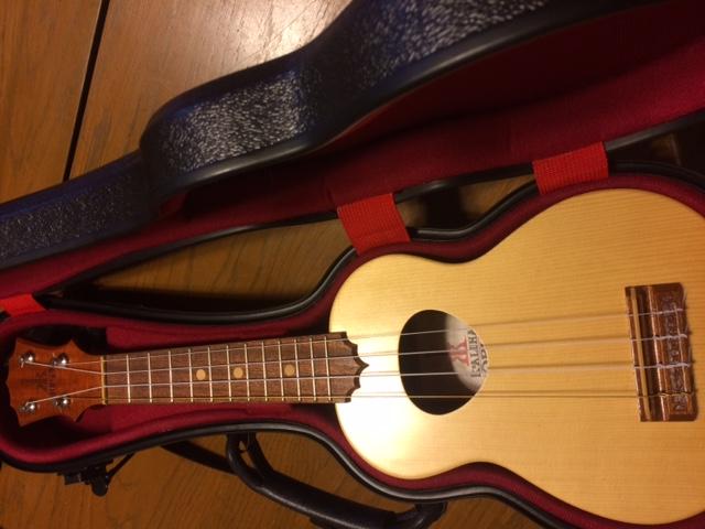 Kohaleha ukulele